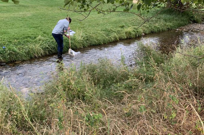 An image of a student taking a sample of water from a stream.