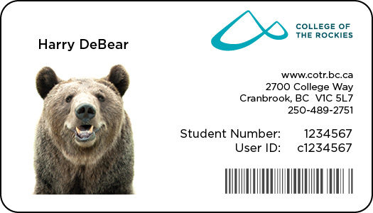 Image shows a sample College ID card.